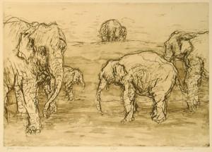 Groep olifanten (ets)